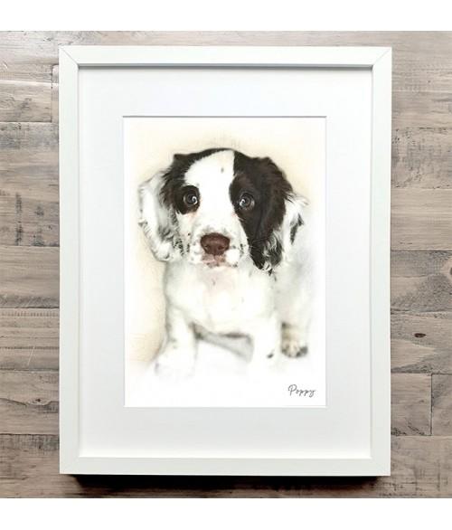 Pet Portrait Illustration - Mitre Frame